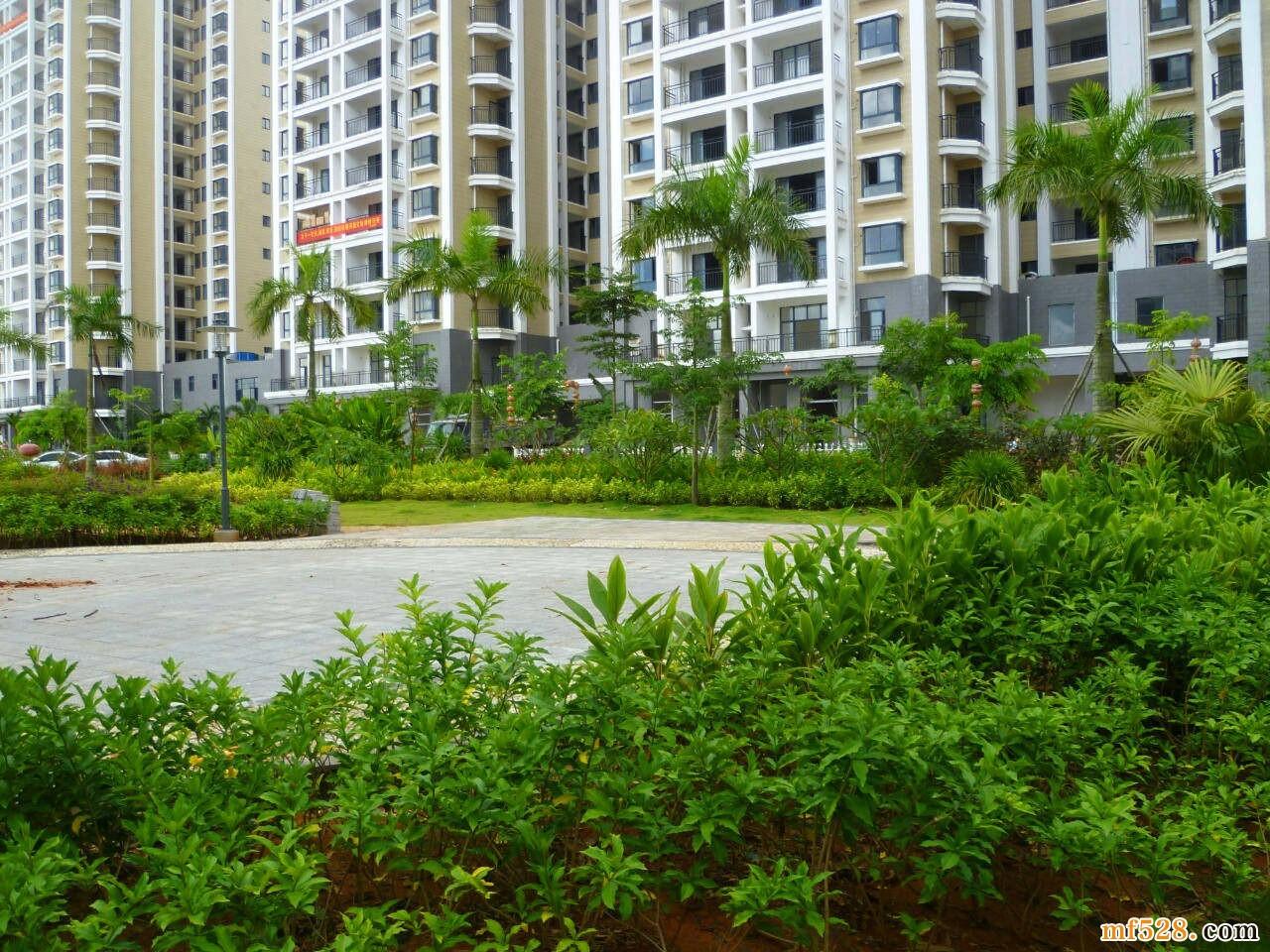 阳光椰风苑|新楼栋加推,精装两房均价8300元/㎡起